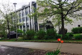 دانشکده علوم و مهندسی