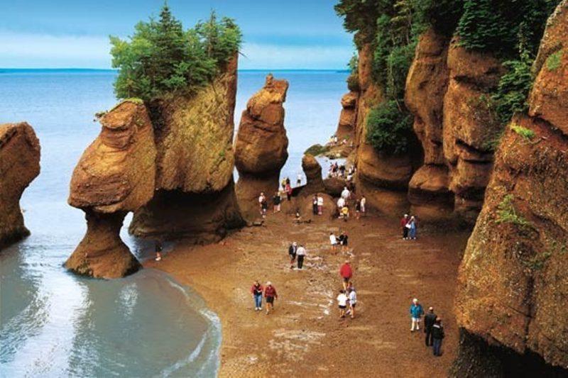 خلیج فاندی در نیوبرانزویک