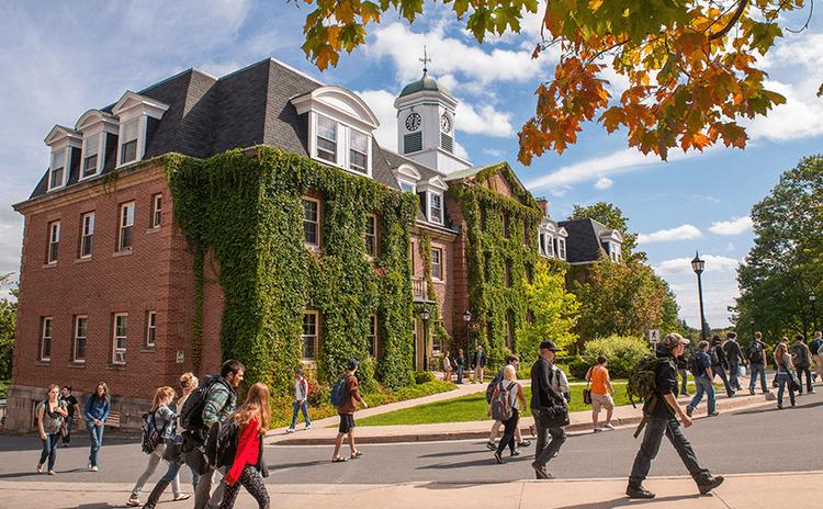 دانشگاه نیوبرانزویک