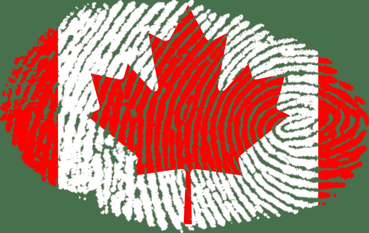 بک گراند چک ویزای کانادا چیست