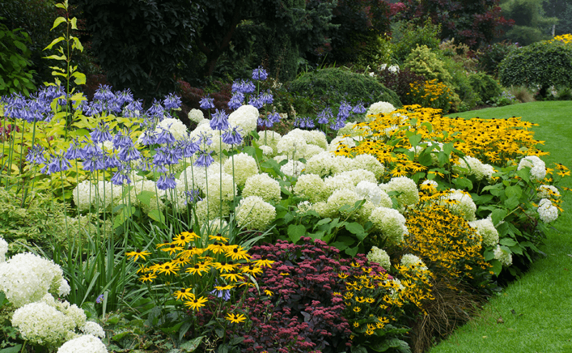 گلخانه موتارت در ادمنتون