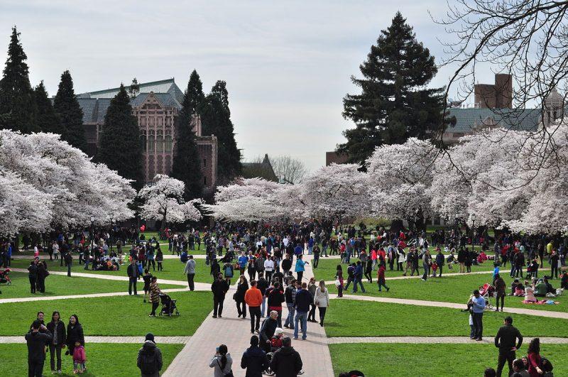 کالج های ونکوور