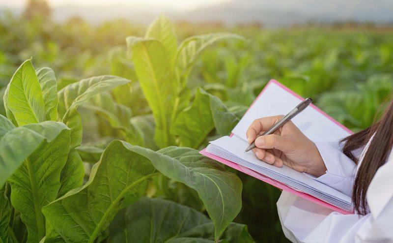 رشته مهندسی کشاورزی و منابع طبیعی در کانادا