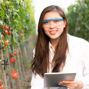 بازار کار مهندسی کشاورزی در کانادا