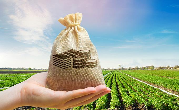 فرصت سرمایه گذاری در صنعت کشاورزی در کانادا