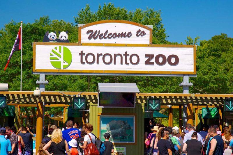 معرفی دو باغ وحش در تورنتو و کلگری