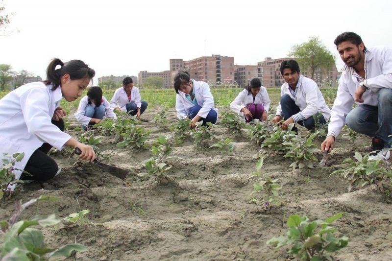 اپلای رشته مهندسی کشاورزی در خارج از کشور