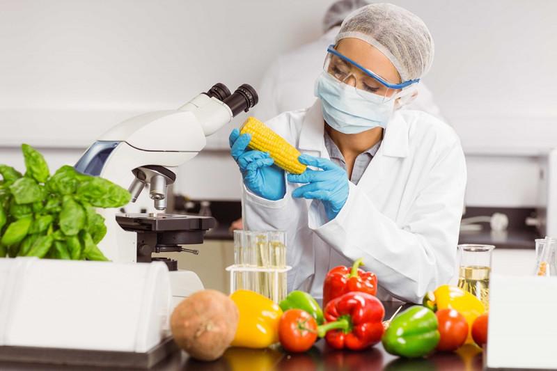 میانگین درآمد رشته صنایع غذایی در دیگر کشورها