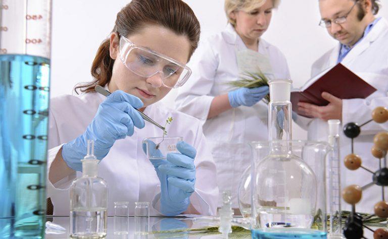 بهترین دانشگاه های بیوتکنولوژی در جهان