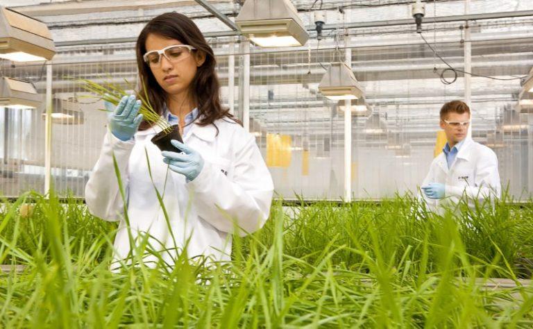 بهترین دانشگاه های کشاورزی در جهان