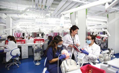 بهترین دانشگاه های دندانپزشکی جهان